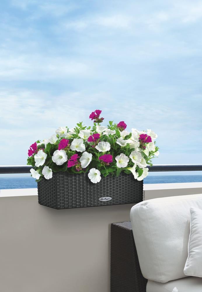samozavla ovac truhl k lechuza balconera cottage 50. Black Bedroom Furniture Sets. Home Design Ideas